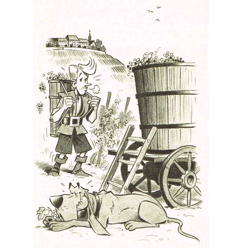 Versand - Comics - Michael Apitz - KARL-Postkarten - KARL und Grandpatte bei der Weinlese