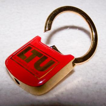 Haushalt - Sicherheit - Schlüsselanhänger - LTU - geöffneter Ring