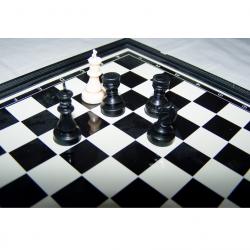 Spiele - Klassische Brettspielsammlung für die Reise von Simba - Figuren