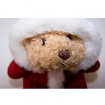 Haushalt - Dekoration - Eskimo-Bär - Gesicht